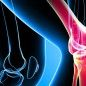 A damaged knee joint can be restored with stem cells