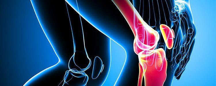 Пошкоджений меніск можна відновити за допомогою стовбурових клітин