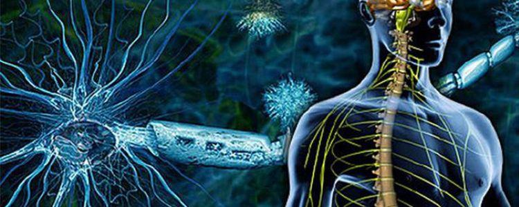 Виявлено мутацію пов'язану з розсіяним склерозом
