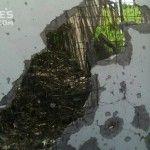Що зараз на передовій: фото обстріляної Авдіївки