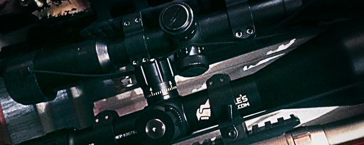 People's Project терміново передали приціл для снайпера АТО