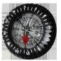 Module for compass FS-2